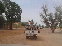 Hydroplan Agricultural Development Mali